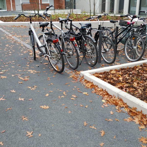 UKM Studienhospital - Münster
